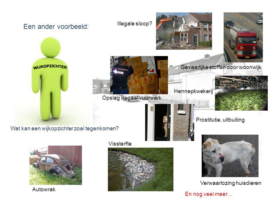 Een ander voorbeeld: Wat kan een wijkopzichter zoal tegenkomen? Illegale sloop? Gevaarlijke stoffen door woonwijk Opslag illegaal vuurwerk Hennepkweke