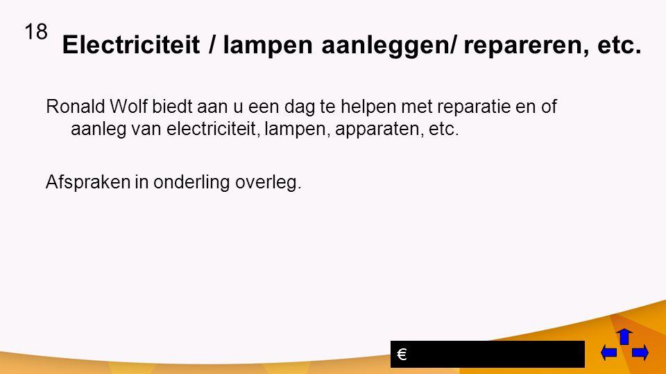 Electriciteit / lampen aanleggen/ repareren, etc.
