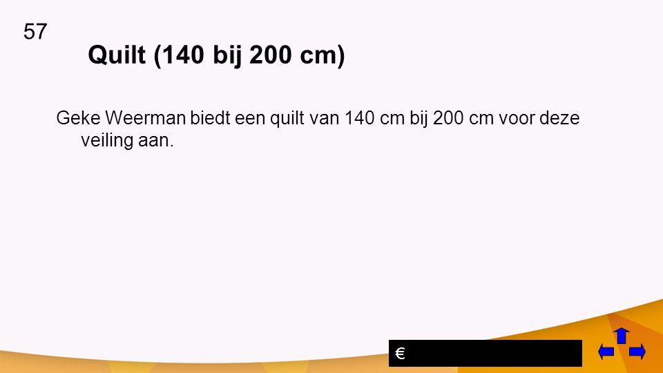 57 € Quilt (140 bij 200 cm) Geke Weerman biedt een quilt van 140 cm bij 200 cm voor deze veiling aan.