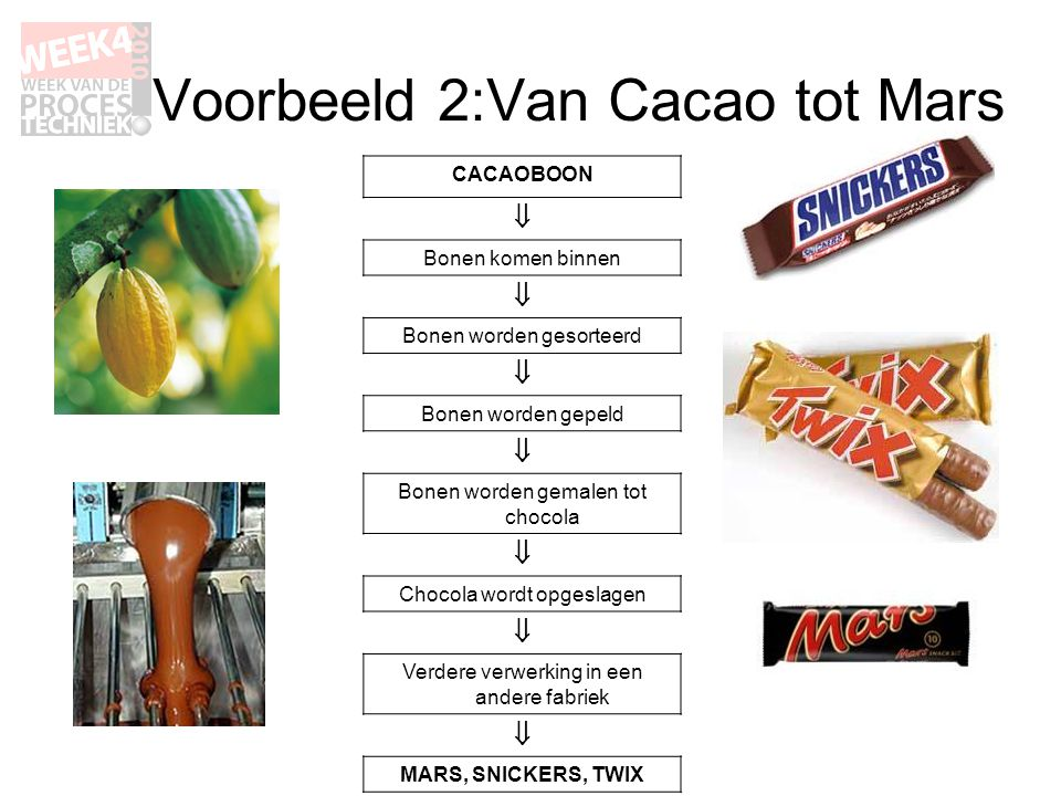 CACAOBOON  Bonen komen binnen  Bonen worden gesorteerd  Bonen worden gepeld  Bonen worden gemalen tot chocola  Chocola wordt opgeslagen  Verdere