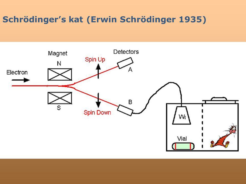 Schrödinger's kat (Erwin Schrödinger 1935)