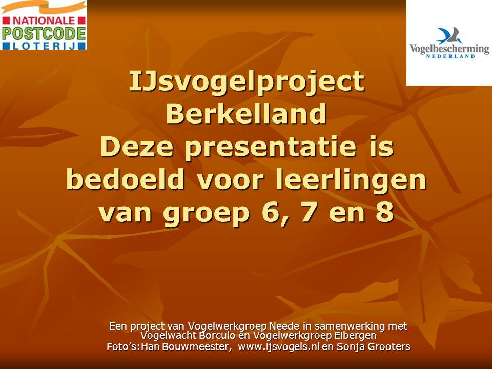 IJsvogelproject Berkelland Deze presentatie is bedoeld voor leerlingen van groep 6, 7 en 8 Een project van Vogelwerkgroep Neede in samenwerking met Vogelwacht Borculo en Vogelwerkgroep Eibergen Foto's:Han Bouwmeester, www.ijsvogels.nl en Sonja Grooters