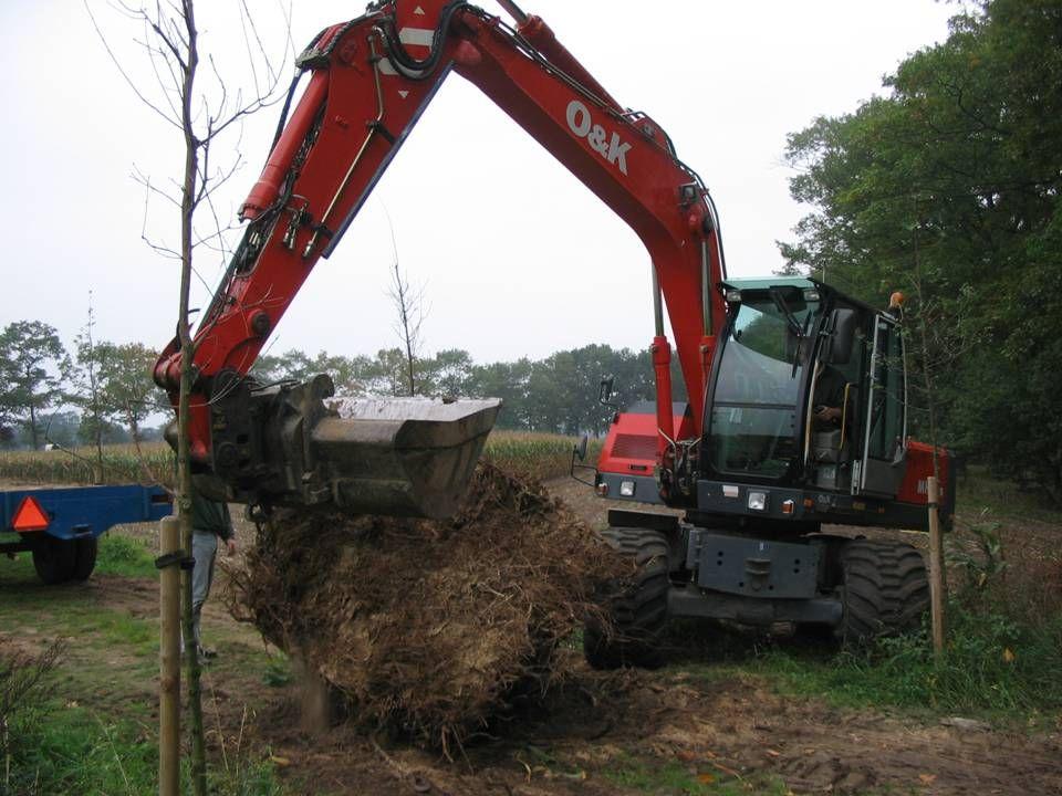 De boomstronk wordt met een ketting vastgemaakt en op de wagen gelegd.