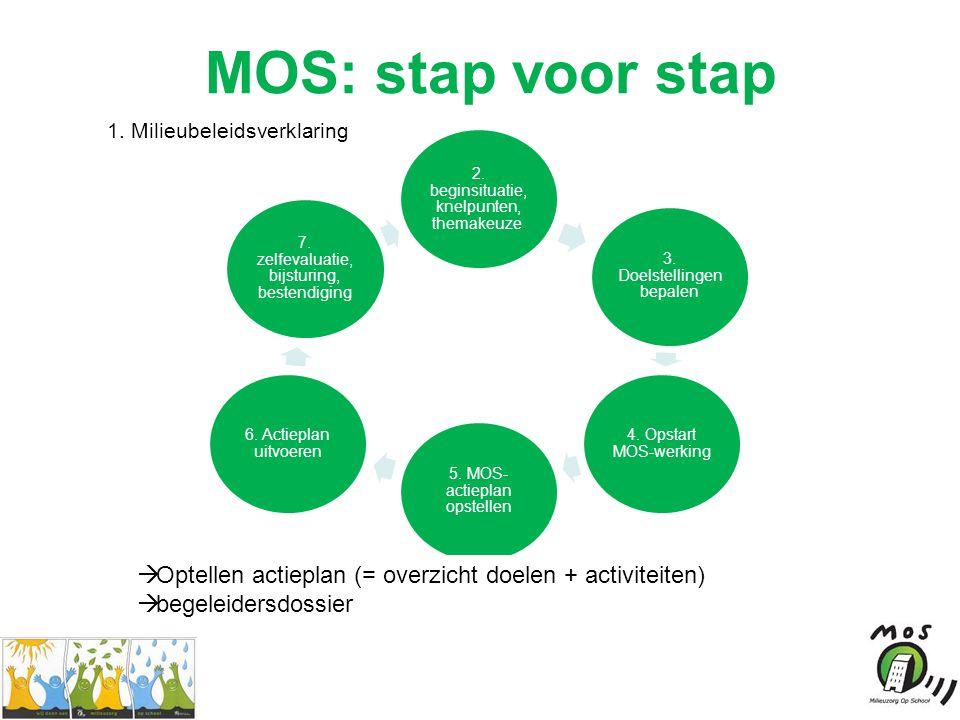 MOS: stap voor stap 2. beginsituatie, knelpunten, themakeuze.