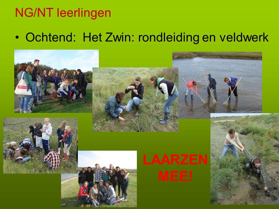 NG/NT leerlingen •Ochtend: Het Zwin: rondleiding en veldwerk LAARZEN MEE!