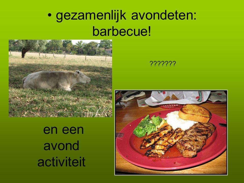 • gezamenlijk avondeten: barbecue! ??????? en een avond activiteit