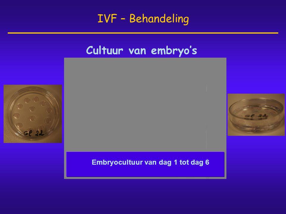 Cultuur van embryo's IVF – Behandeling Embryocultuur van dag 1 tot dag 6