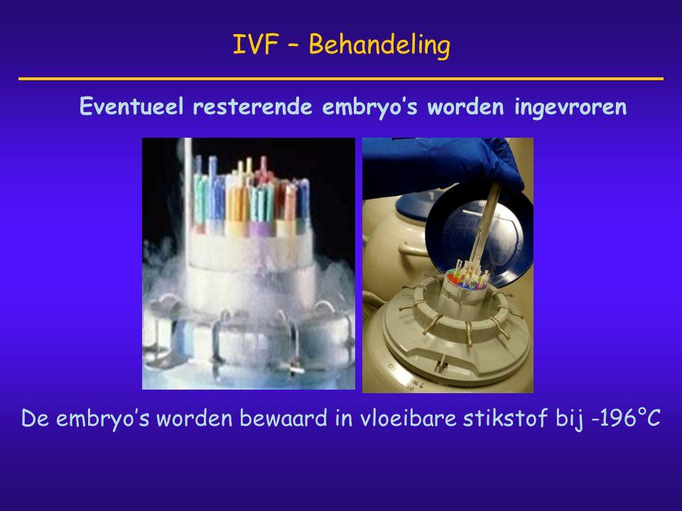 Eventueel resterende embryo's worden ingevroren IVF – Behandeling De embryo's worden bewaard in vloeibare stikstof bij -196°C