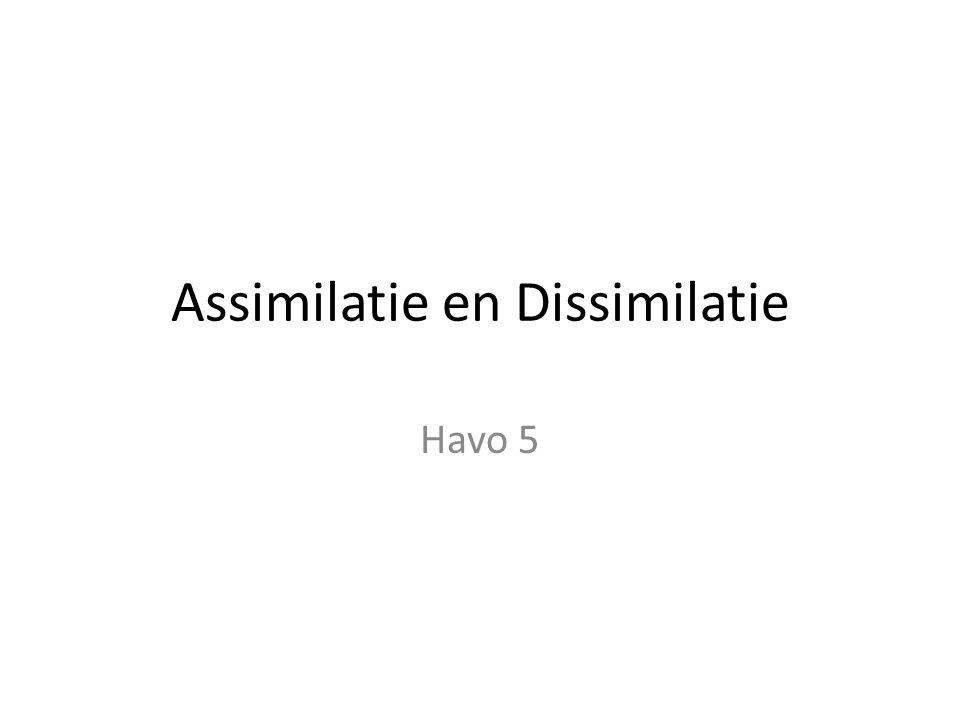 Assimilatie en Dissimilatie Havo 5