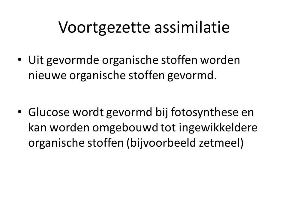 Voortgezette assimilatie • Uit gevormde organische stoffen worden nieuwe organische stoffen gevormd. • Glucose wordt gevormd bij fotosynthese en kan w