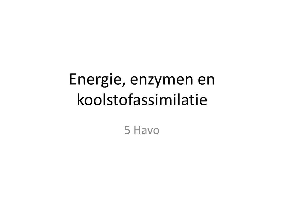 Energie, enzymen en koolstofassimilatie 5 Havo