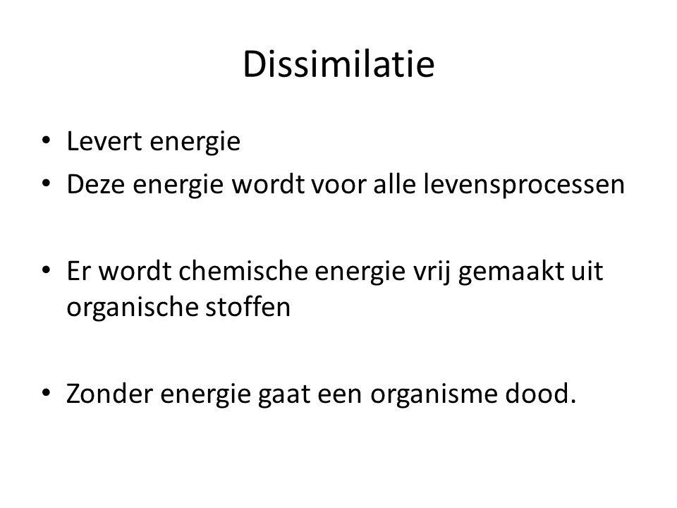 Dissimilatie • Levert energie • Deze energie wordt voor alle levensprocessen • Er wordt chemische energie vrij gemaakt uit organische stoffen • Zonder energie gaat een organisme dood.