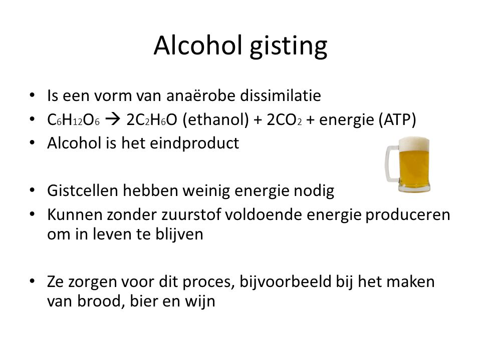 Alcohol gisting • Is een vorm van anaërobe dissimilatie • C 6 H 12 O 6  2C 2 H 6 O (ethanol) + 2CO 2 + energie (ATP) • Alcohol is het eindproduct • G