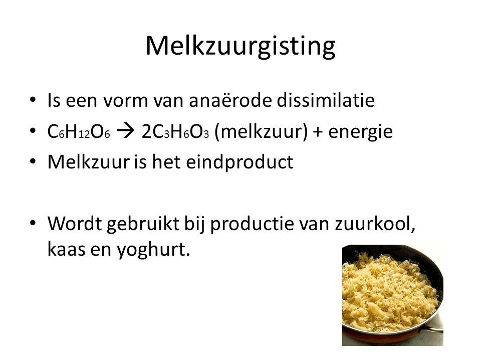 Melkzuurgisting • Is een vorm van anaërode dissimilatie • C 6 H 12 O 6  2C 3 H 6 O 3 (melkzuur) + energie • Melkzuur is het eindproduct • Wordt gebruikt bij productie van zuurkool, kaas en yoghurt.
