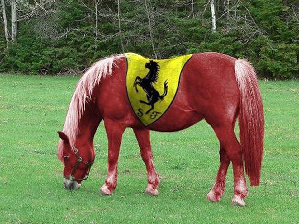Ferrari met 500 PK's