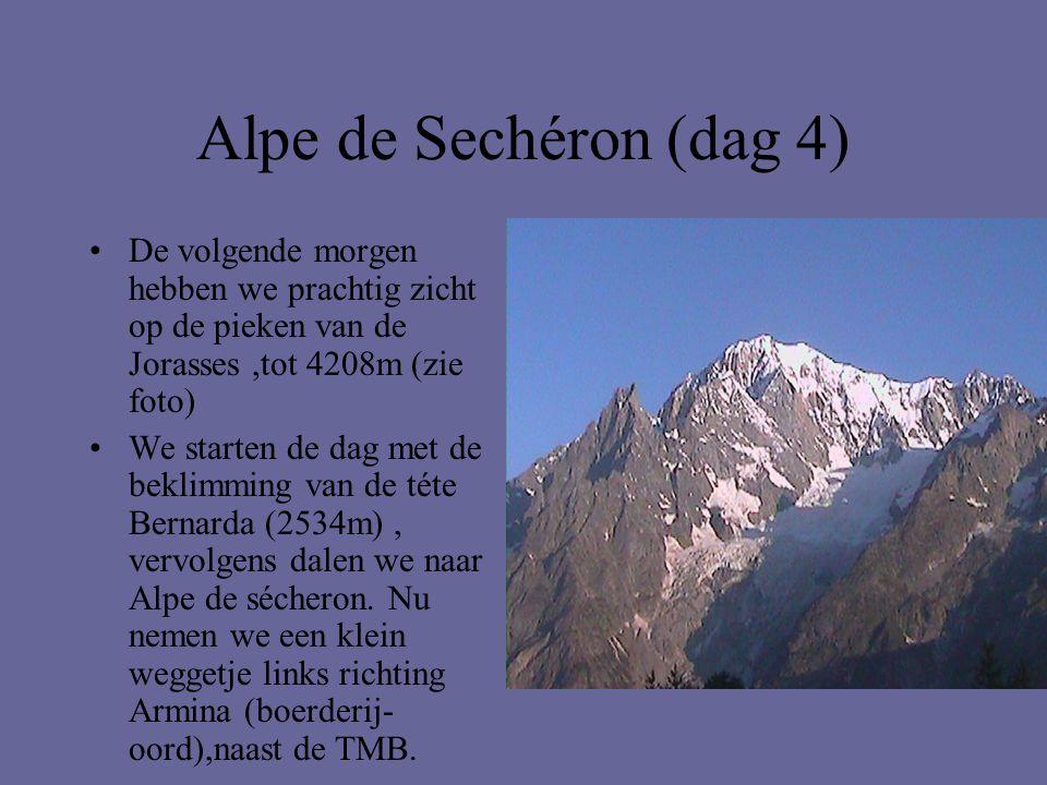 Alpe de Sechéron (dag 4) •De volgende morgen hebben we prachtig zicht op de pieken van de Jorasses,tot 4208m (zie foto) •We starten de dag met de bekl