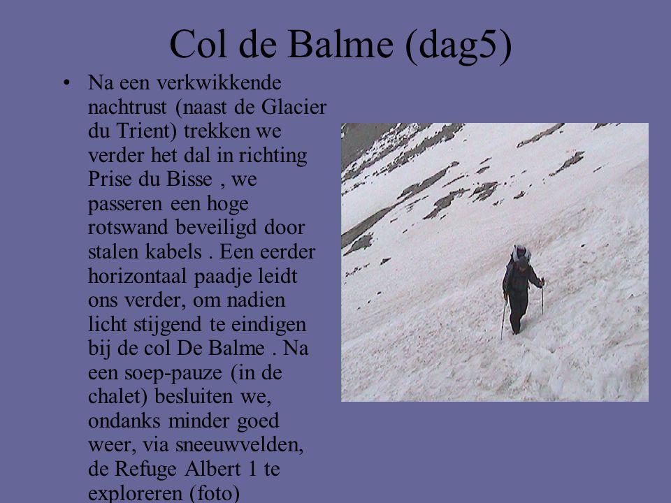 Col de Balme (dag5) •Na een verkwikkende nachtrust (naast de Glacier du Trient) trekken we verder het dal in richting Prise du Bisse, we passeren een