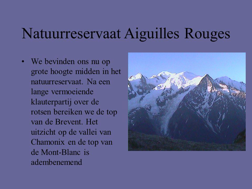 Natuurreservaat Aiguilles Rouges •We bevinden ons nu op grote hoogte midden in het natuurreservaat. Na een lange vermoeiende klauterpartij over de rot