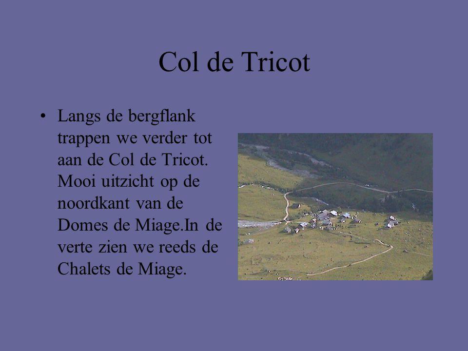 Col de Tricot •Langs de bergflank trappen we verder tot aan de Col de Tricot. Mooi uitzicht op de noordkant van de Domes de Miage.In de verte zien we