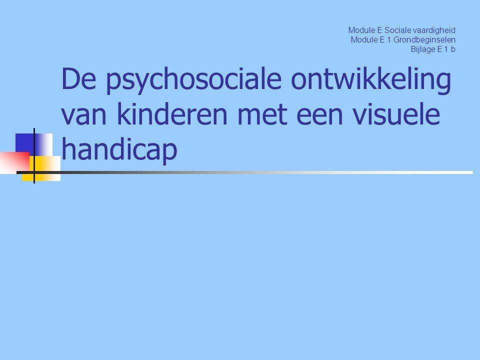 De psychosociale ontwikkeling van kinderen met een visuele handicap Module E Sociale vaardigheid Module E 1 Grondbeginselen Bijlage E 1 b
