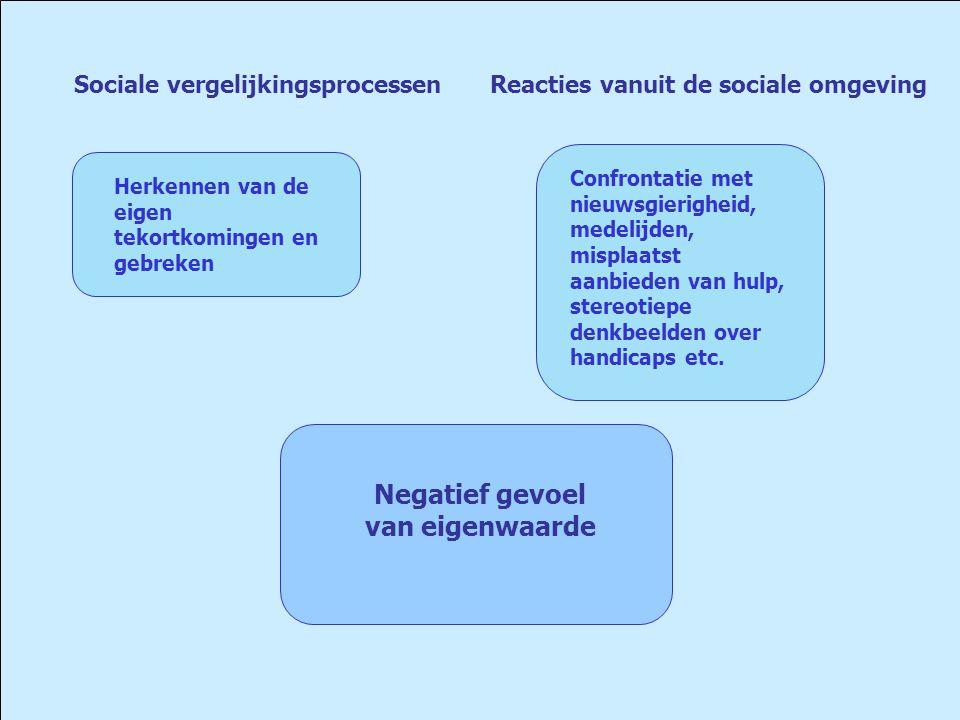 Sociale vergelijkingsprocessen Reacties vanuit de sociale omgeving Herkennen van de eigen tekortkomingen en gebreken Confrontatie met nieuwsgierigheid