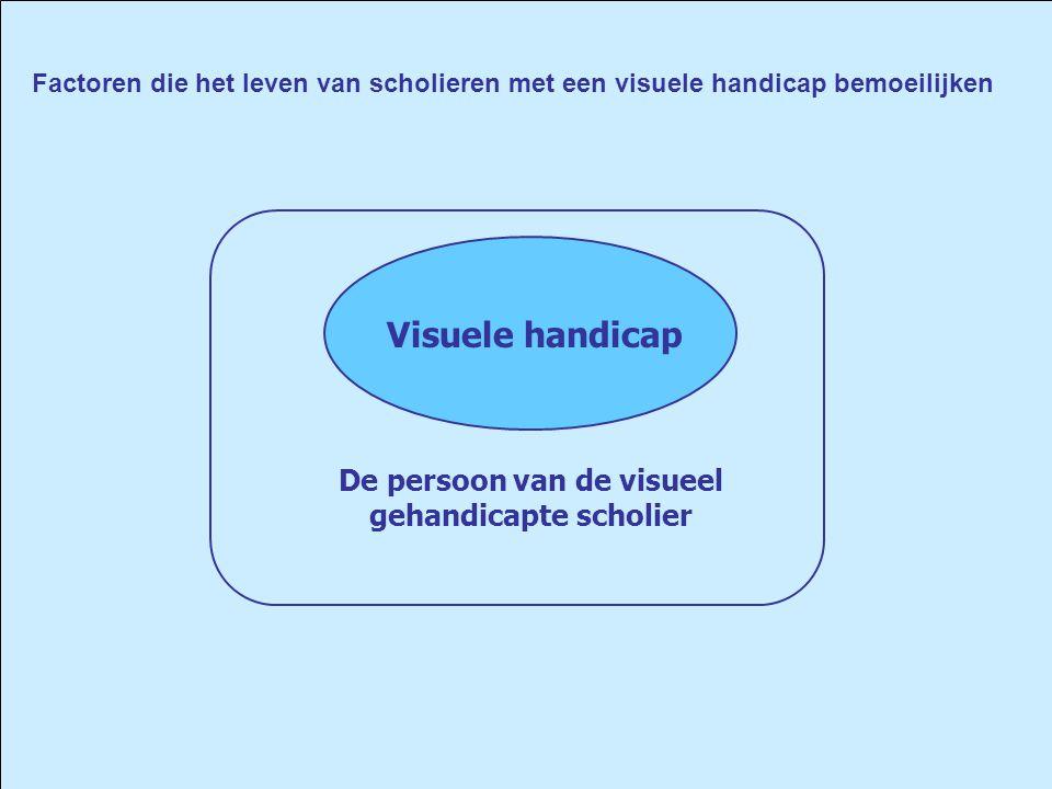 Visuele handicap Factoren die het leven van scholieren met een visuele handicap bemoeilijken De persoon van de visueel gehandicapte scholier