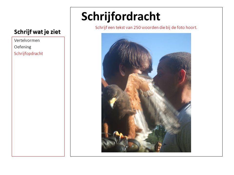 Schrijf wat je ziet Schrijfordracht Schrijf een tekst van 250 woorden die bij de foto hoort. Vertelvormen Oefening Schrijfopdracht
