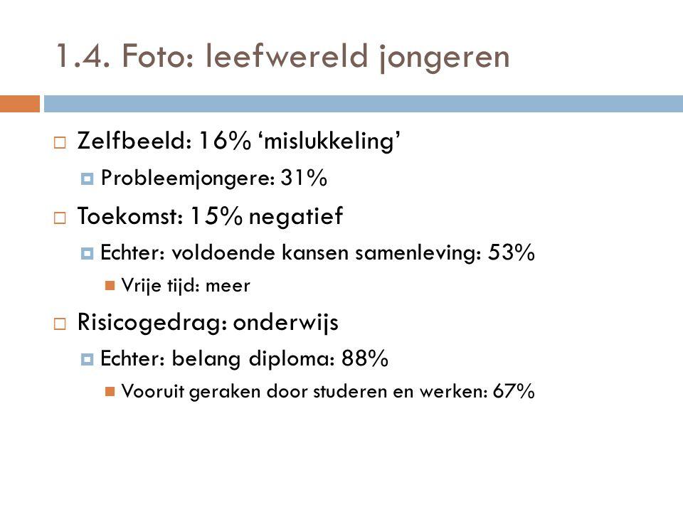 1.4. Foto: leefwereld jongeren  Zelfbeeld: 16% 'mislukkeling'  Probleemjongere: 31%  Toekomst: 15% negatief  Echter: voldoende kansen samenleving: