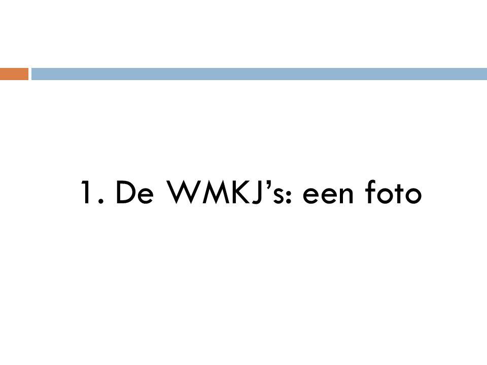 1. De WMKJ's: een foto
