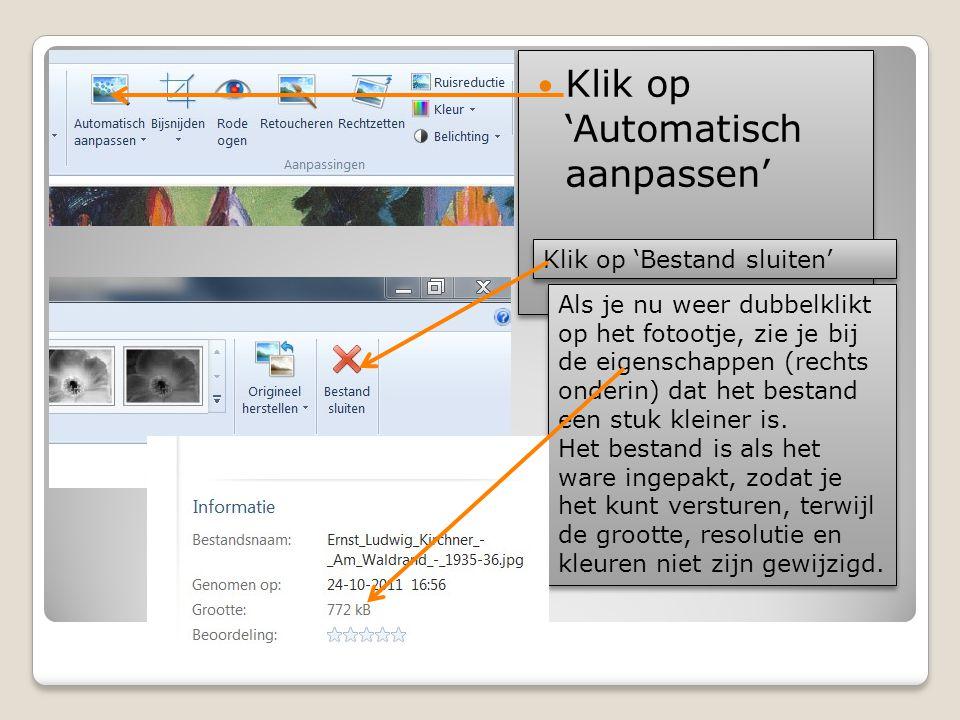  Klik op 'Automatisch aanpassen' Klik op 'Bestand sluiten' Als je nu weer dubbelklikt op het fotootje, zie je bij de eigenschappen (rechts onderin) d