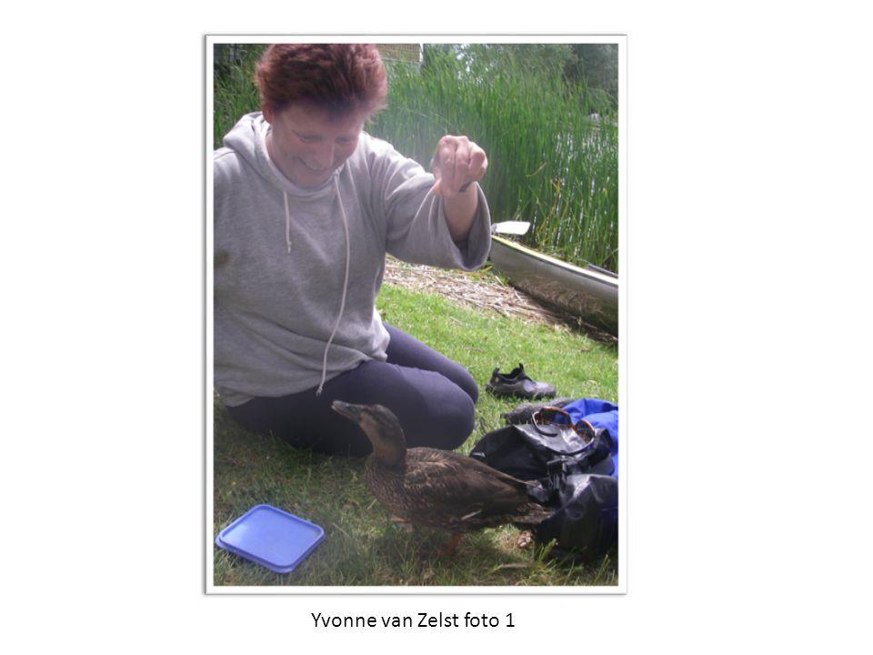 Yvonne van Zelst foto 1