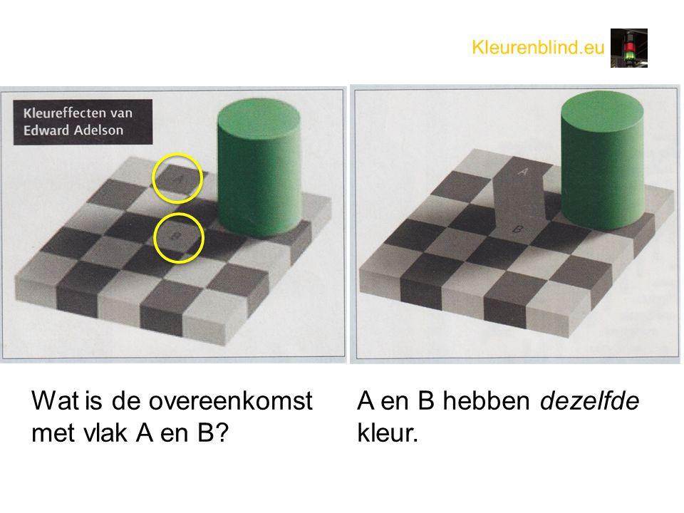 Wat is de overeenkomst met vlak A en B A en B hebben dezelfde kleur.
