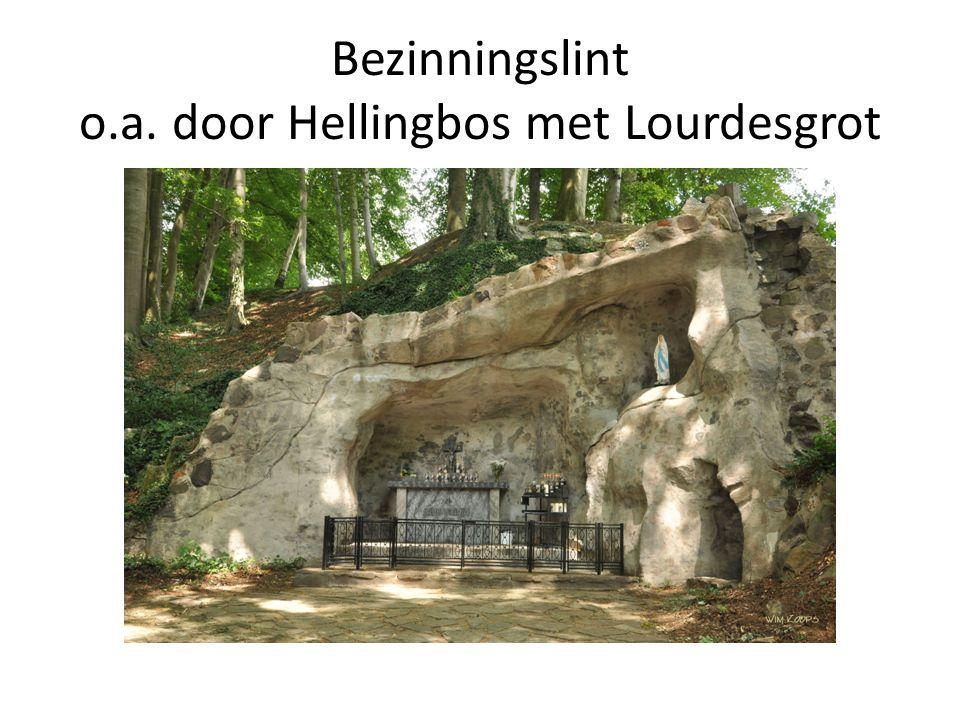 Activiteiten 2012 - 2013 Tot slot Invulling openbare ruimte -> Concentratie van banieren 'Welkom in Stoomstadje Simpelveld' -> Groenvoorziening: bv.