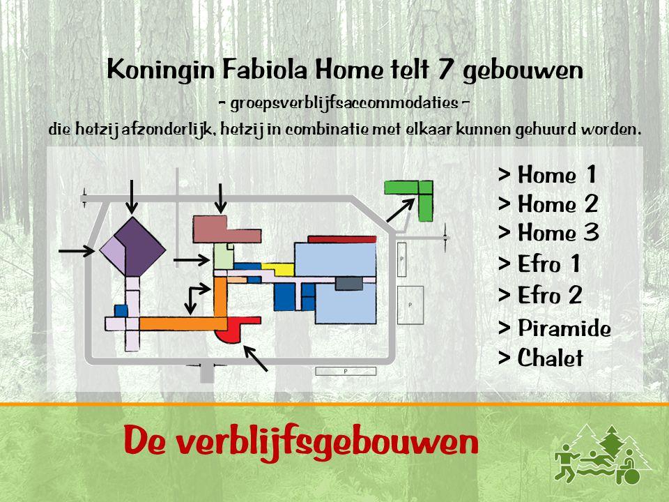 Activiteiten op domein 4 Bakhuis - bakken in accommodatie