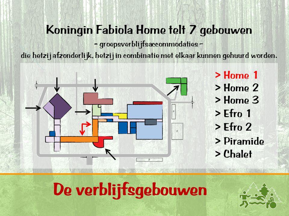 11 De verblijfsgebouwen Koningin Fabiola Home telt 7 gebouwen - groepsverblijfsaccommodaties – die hetzij afzonderlijk, hetzij in combinatie met elkaa