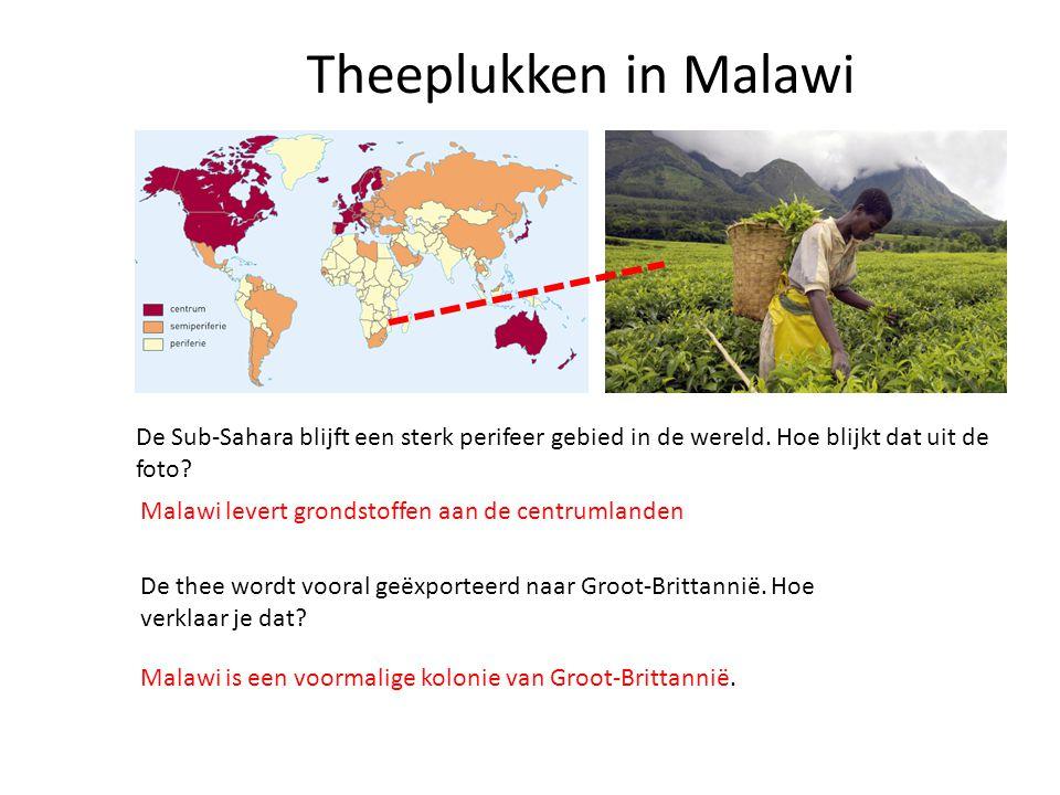 Theeplukken in Malawi De Sub-Sahara blijft een sterk perifeer gebied in de wereld. Hoe blijkt dat uit de foto? Malawi levert grondstoffen aan de centr
