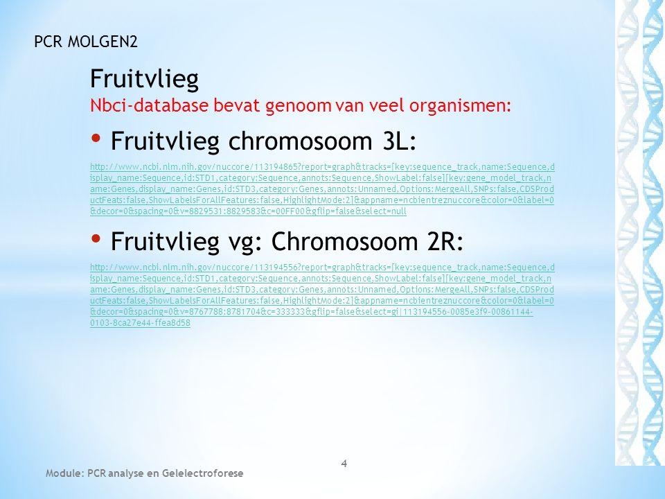 Fruitvlieg Nbci-database bevat genoom van veel organismen: • Fruitvlieg chromosoom 3L: http://www.ncbi.nlm.nih.gov/nuccore/113194865?report=graph&trac