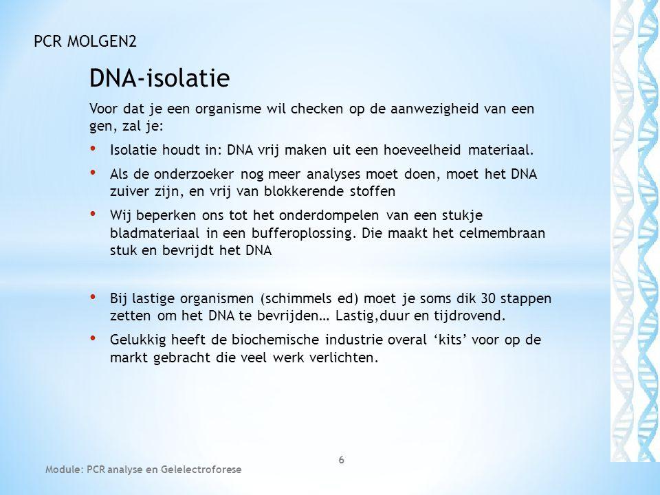 DNA-isolatie Voor dat je een organisme wil checken op de aanwezigheid van een gen, zal je: • Isolatie houdt in: DNA vrij maken uit een hoeveelheid mat