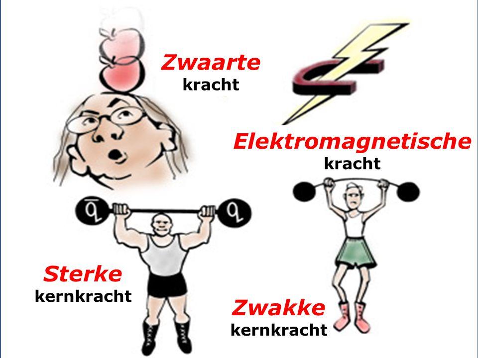 Zwaarte kracht Elektromagnetische kracht Sterke kernkracht Zwakke kernkracht