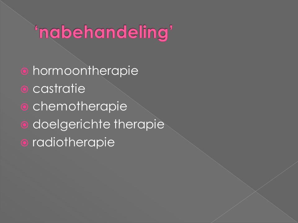  hormoontherapie  castratie  chemotherapie  doelgerichte therapie  radiotherapie