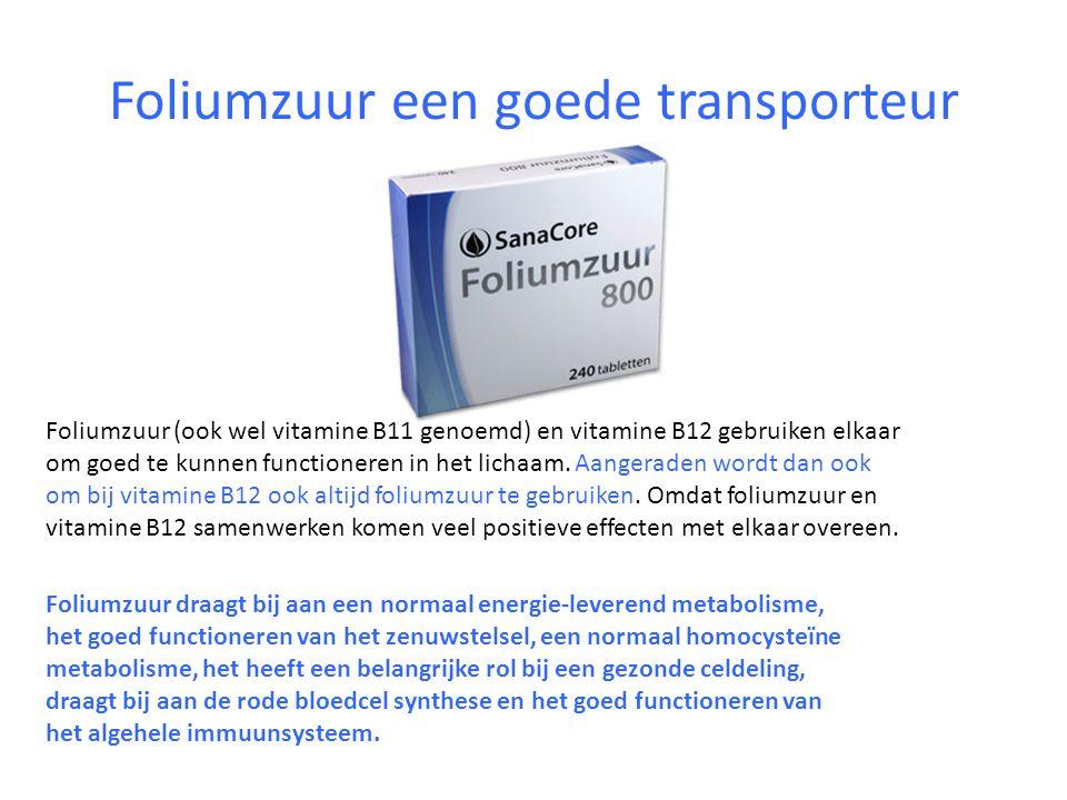 Foliumzuur een goede transporteur Foliumzuur (ook wel vitamine B11 genoemd) en vitamine B12 gebruiken elkaar om goed te kunnen functioneren in het lic