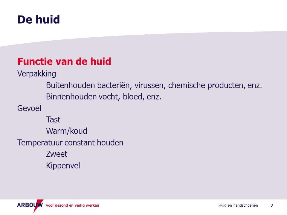 voor gezond en veilig werken De huid 3Huid en handschoenen Functie van de huid Verpakking Buitenhouden bacteriën, virussen, chemische producten, enz.
