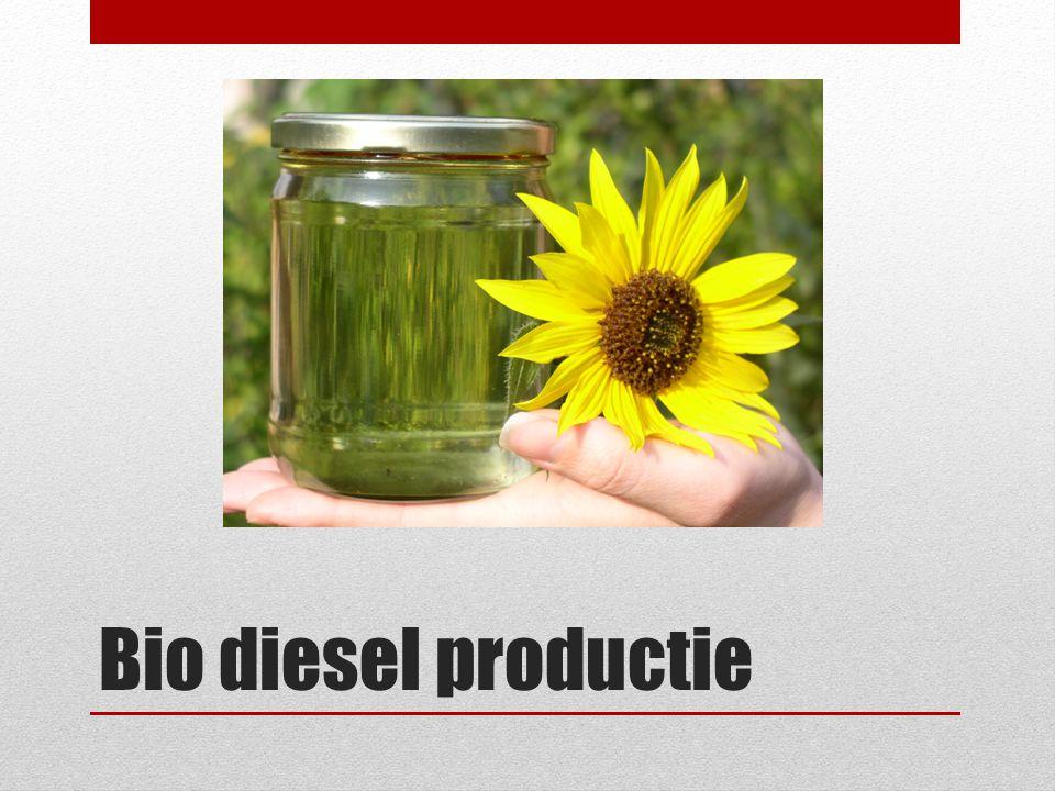 Bio diesel productie