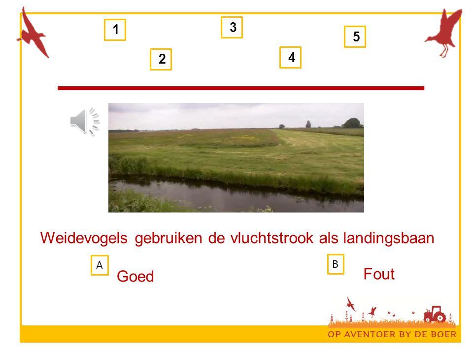 1 2 3 4 5 Weidevogels gebruiken de vluchtstrook als landingsbaan Goed Fout B A