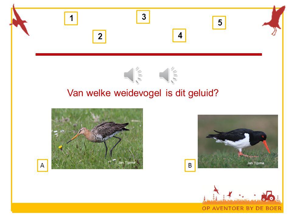 1 2 3 4 5 Van welke weidevogel is dit geluid? BA Jan Tijsma