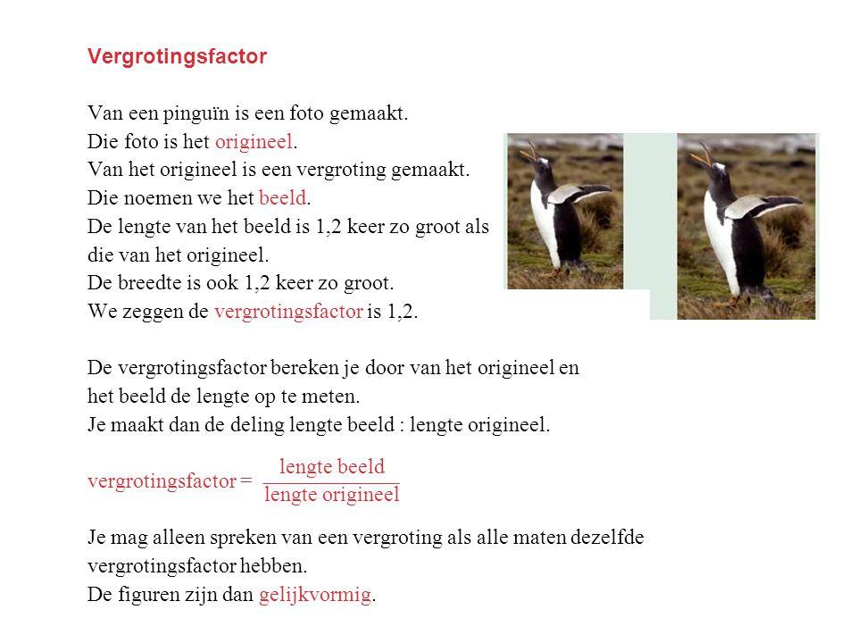 Vergrotingsfactor Van een pinguïn is een foto gemaakt. Die foto is het origineel. Van het origineel is een vergroting gemaakt. Die noemen we het beeld