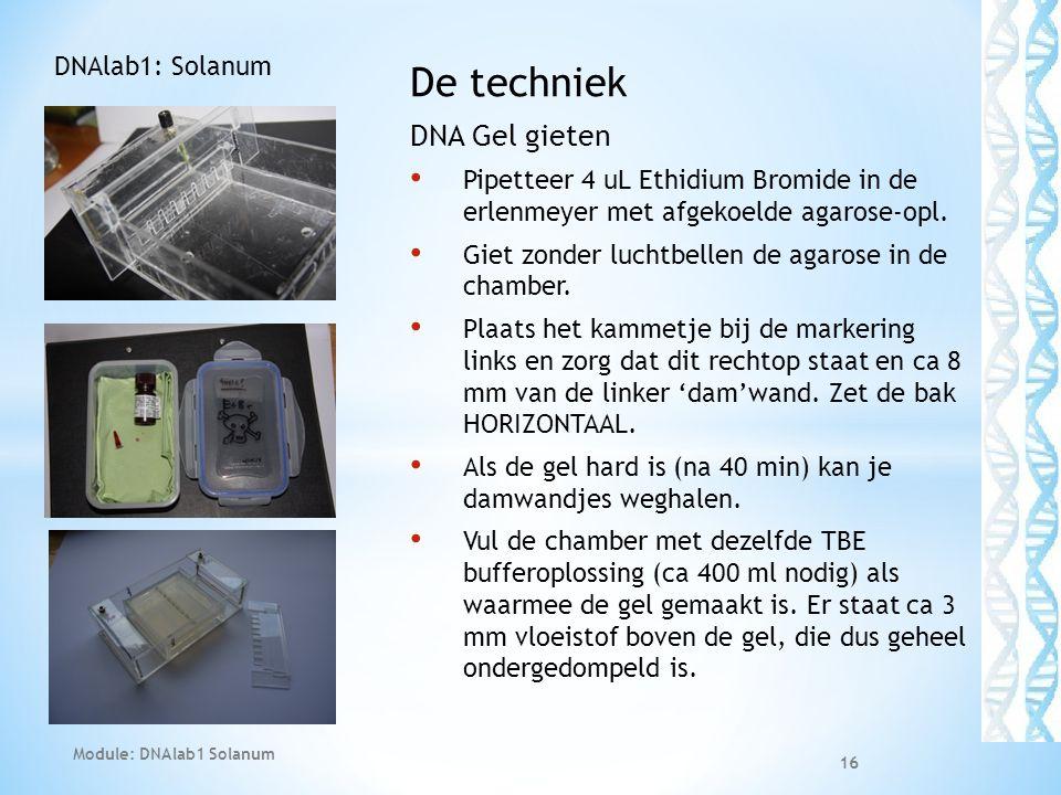 De techniek DNA Gel gieten • Pipetteer 4 uL Ethidium Bromide in de erlenmeyer met afgekoelde agarose-opl. • Giet zonder luchtbellen de agarose in de c