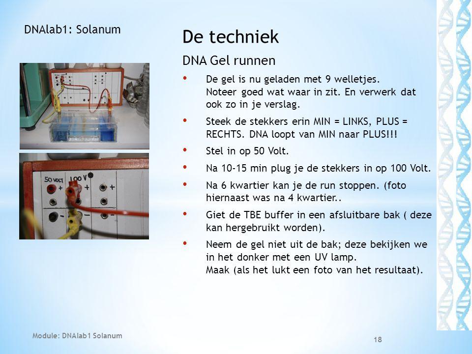 De techniek DNA Gel runnen • De gel is nu geladen met 9 welletjes. Noteer goed wat waar in zit. En verwerk dat ook zo in je verslag. • Steek de stekke
