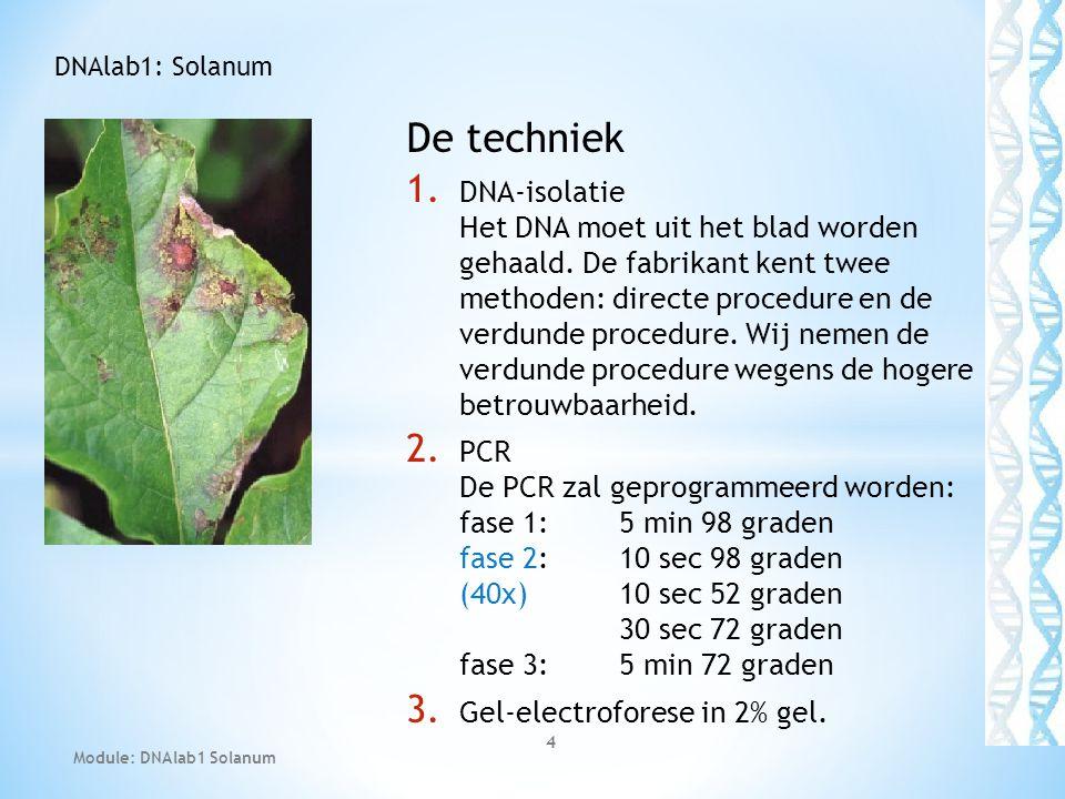 De techniek 1. DNA-isolatie Het DNA moet uit het blad worden gehaald. De fabrikant kent twee methoden: directe procedure en de verdunde procedure. Wij