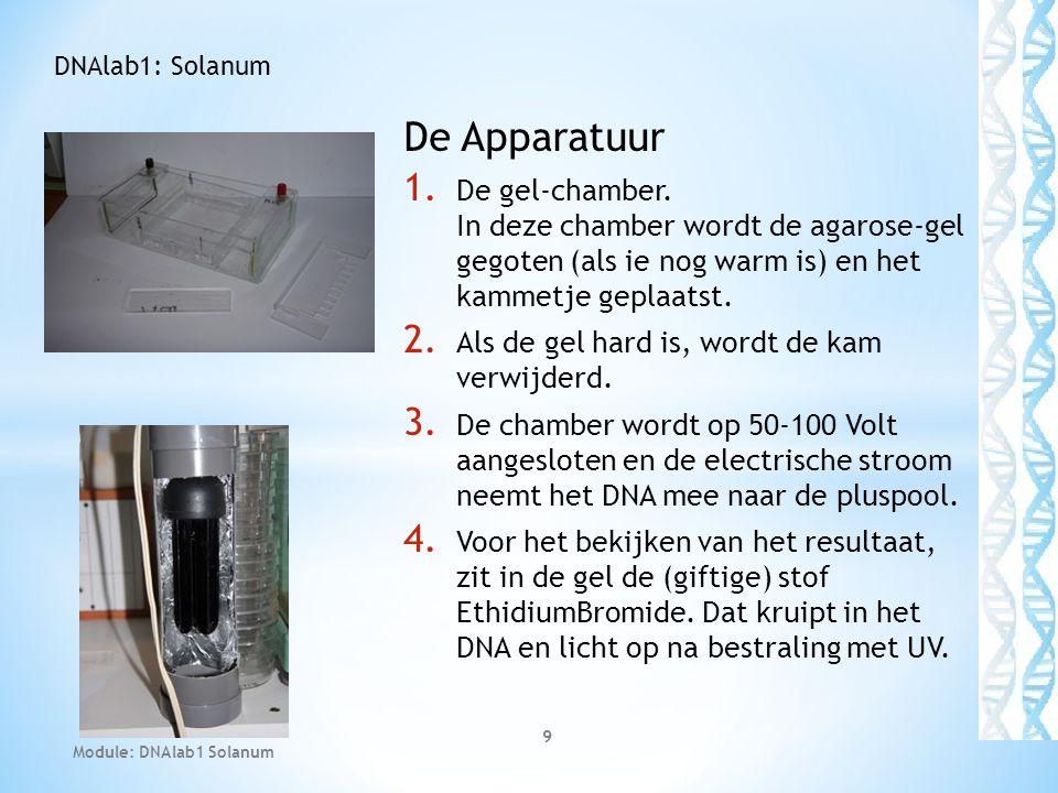 De Apparatuur 1. De gel-chamber. In deze chamber wordt de agarose-gel gegoten (als ie nog warm is) en het kammetje geplaatst. 2. Als de gel hard is, w